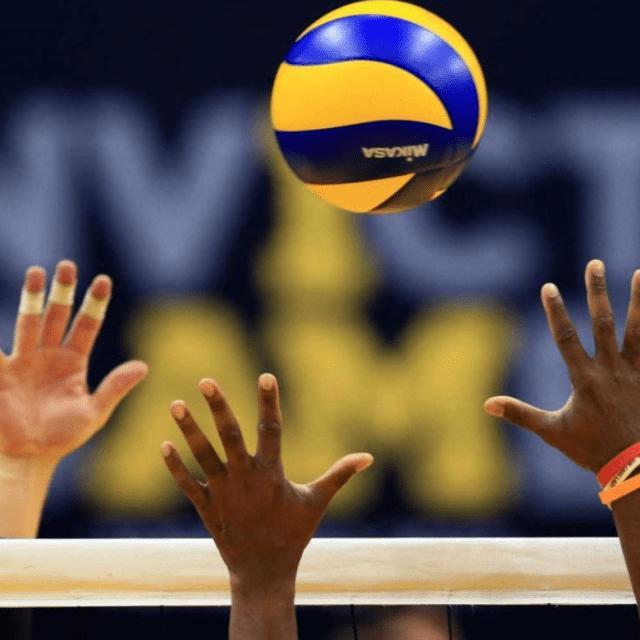 Imagem do grupo Voleibol
